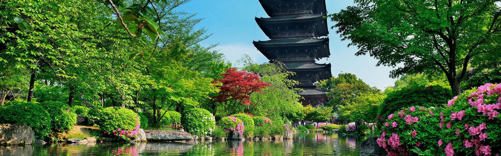Japan's Olympic Summer