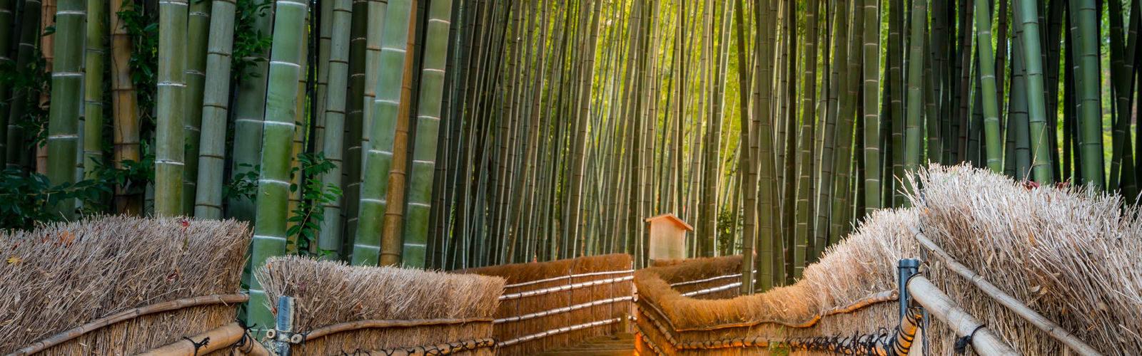 Weekend of Luxury in Kyoto