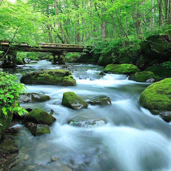 Oirase Stream in Aomori